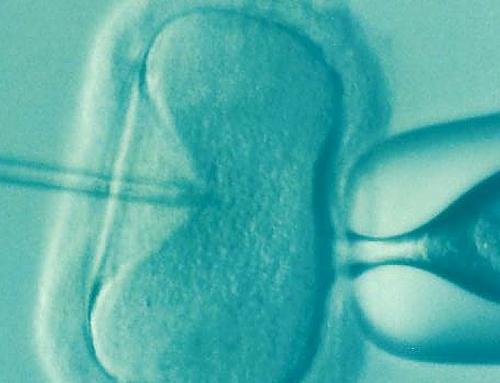 Les aspects médicaux de l'infertilité Halakhique